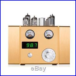 Valve Tube FM Radio Vintage Stereo Röhrenradio Tuner FM UKW Rundfunkempfänger